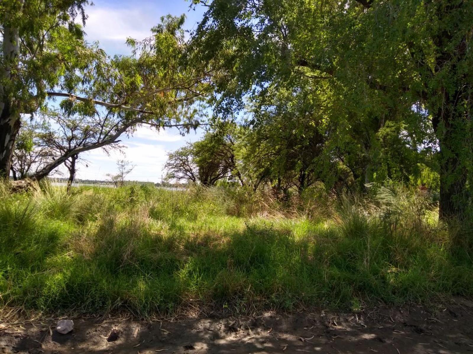 Terrenos ubicados en zona El Faro, DAIANA DOMINGUEZ NEGOCIOS INMOBILIARIOS